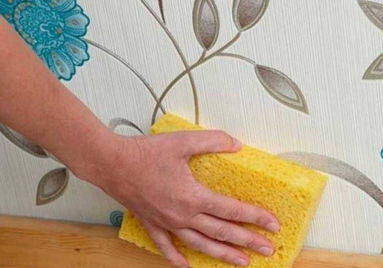 Как отмыть и почистить обои от пыли и грязи?